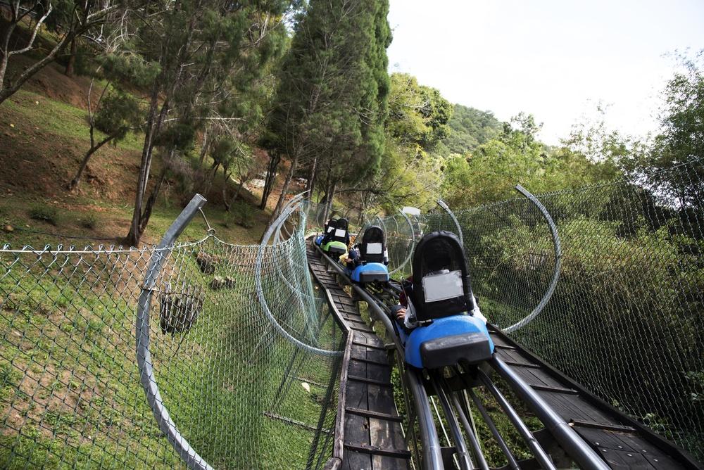Mountain coaster karts