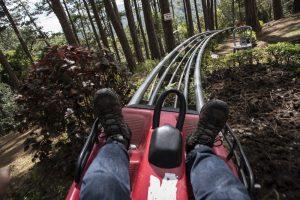 feet of a person in a mountain coaster