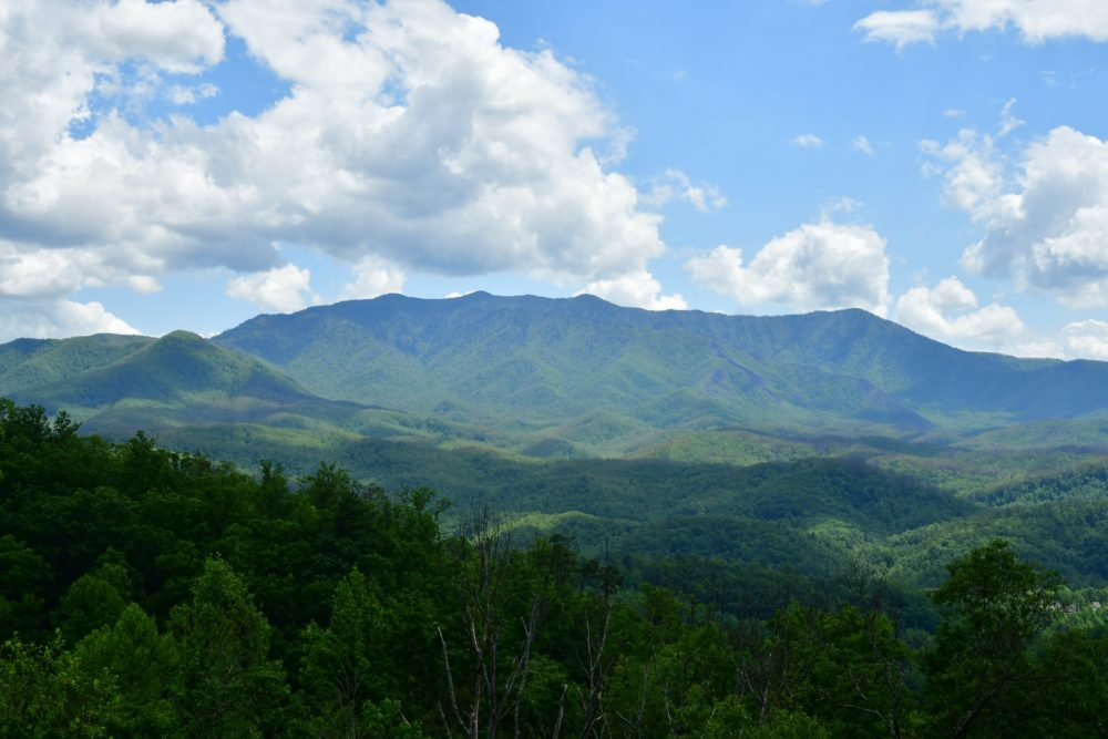 views of the smoky mountains