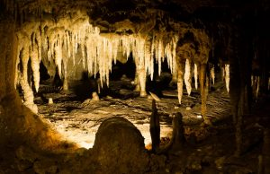 stalagmites in a cave