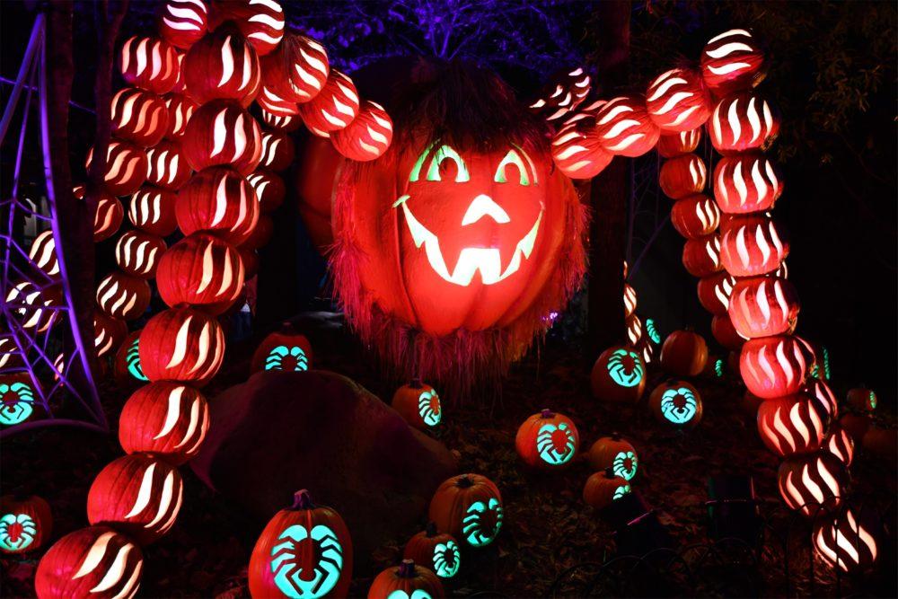 spider made out of pumpkin jack o lanterns